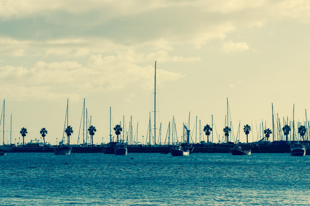 Public Domain Images – .com – Blue Water Ocean Sailboats Palm Trees Clouds